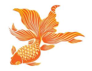 goldfish_web
